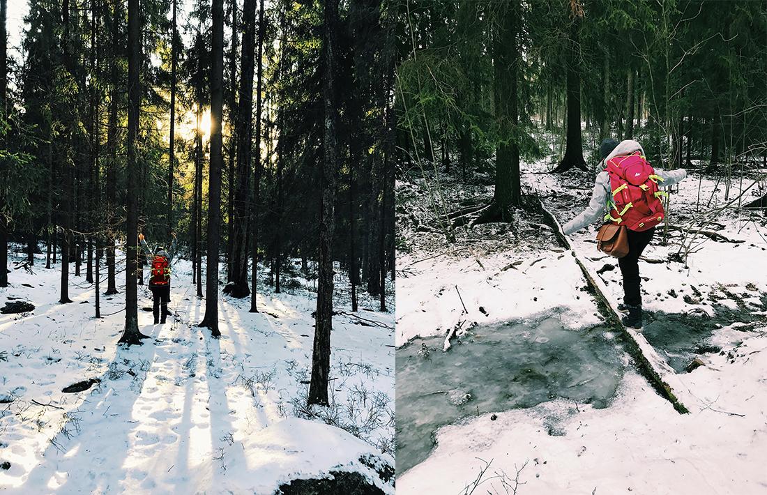 Una vegana en los bosques de Finlandia – 2a Parte
