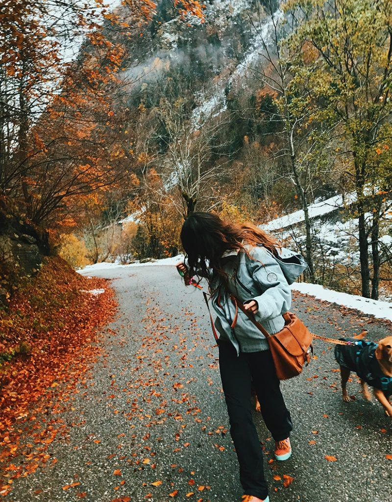 En el trayecto, los perros no pudieron pasarlo mejor.
