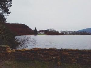 Naturaleza y bosques en Escocia. Qué hacer y qué ver.