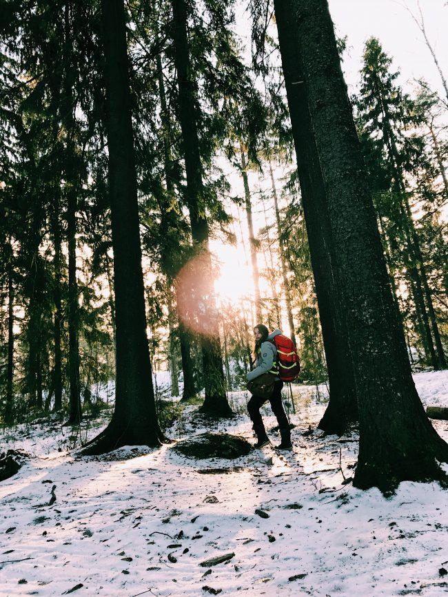 Keskuspuisto, Finlandia