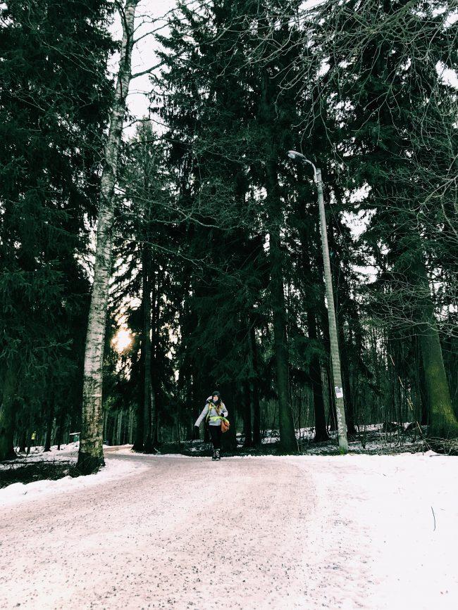 Caminos en Keskuspuisto, Helsinki - Finlandia