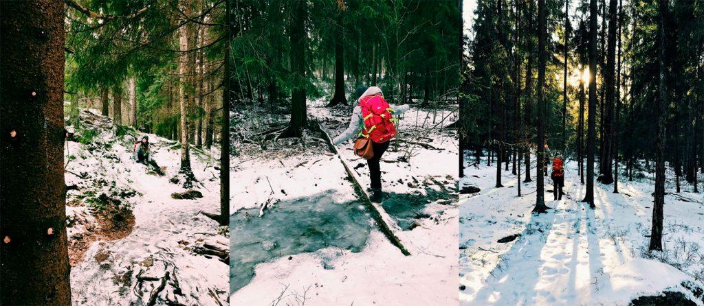 Bosques de Helsinki. Qué ver y qué hacer en Helsinki, Finlandia. Guía de viaje por Helsinki.