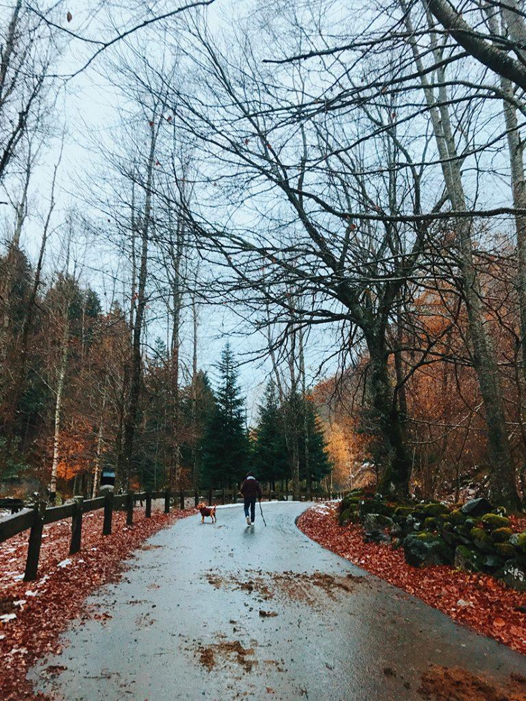 Camino a Uelths de Joèu.