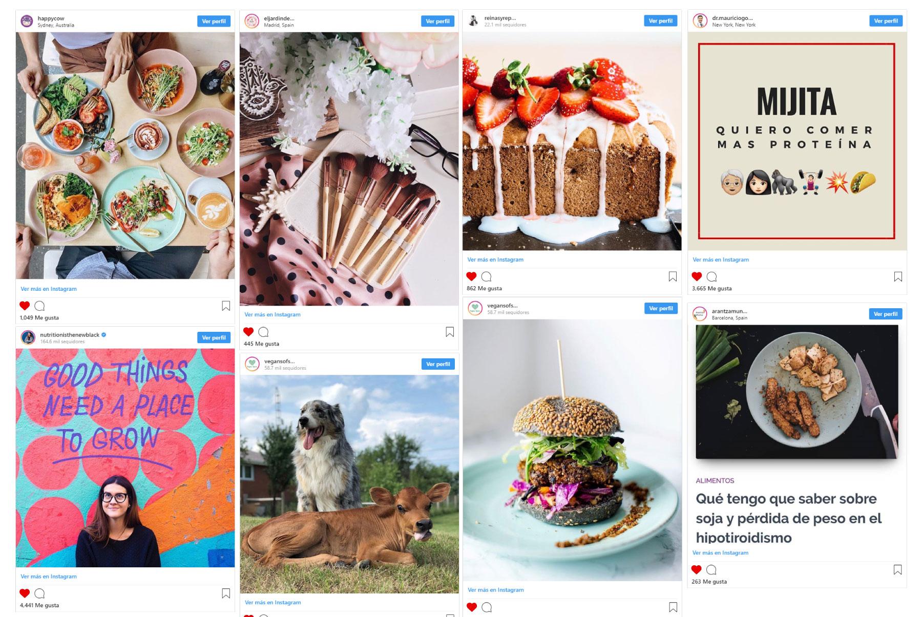 Cuentas instagram influencers veganismo vegetarianismo recetas nutricion