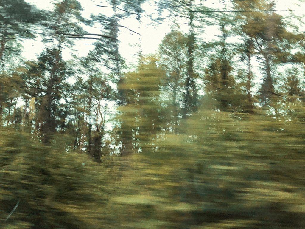 Camino a Auschwitz-Birkenau...