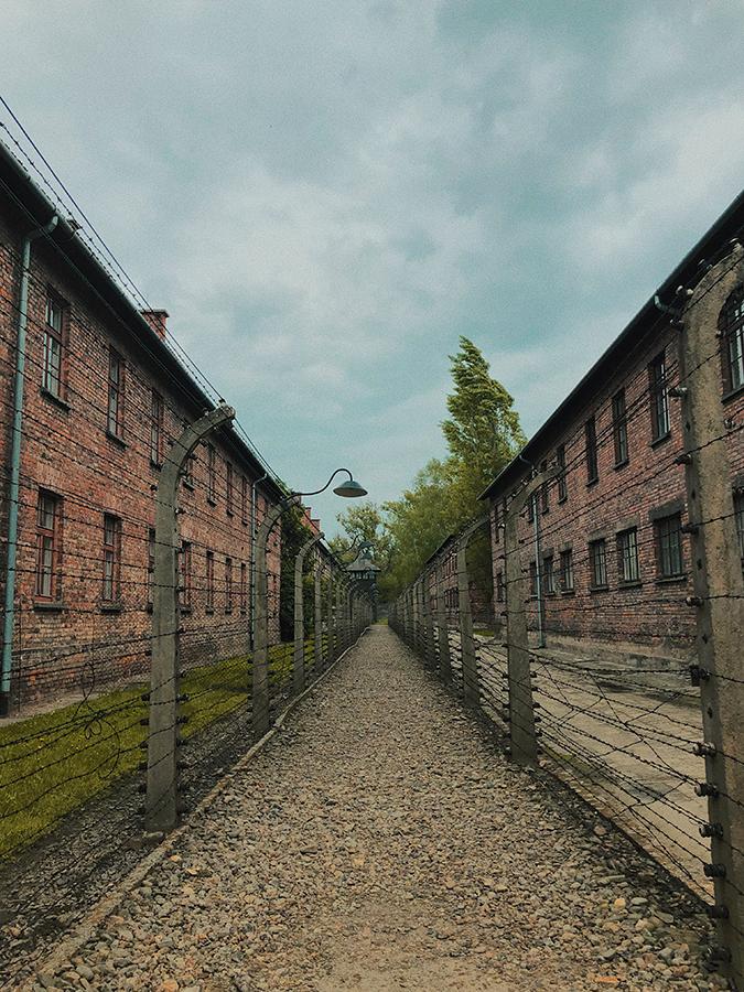 Vallas eléctricas de Auschwitz.