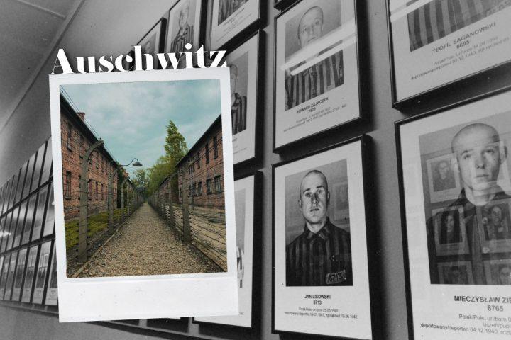 blog_experiencia-viajes-veganismo-cracovia-polonia-auschwitz