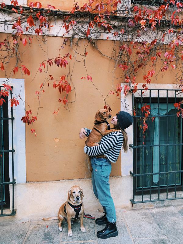 cuenca-viajar-consejos-guia-perros-blog