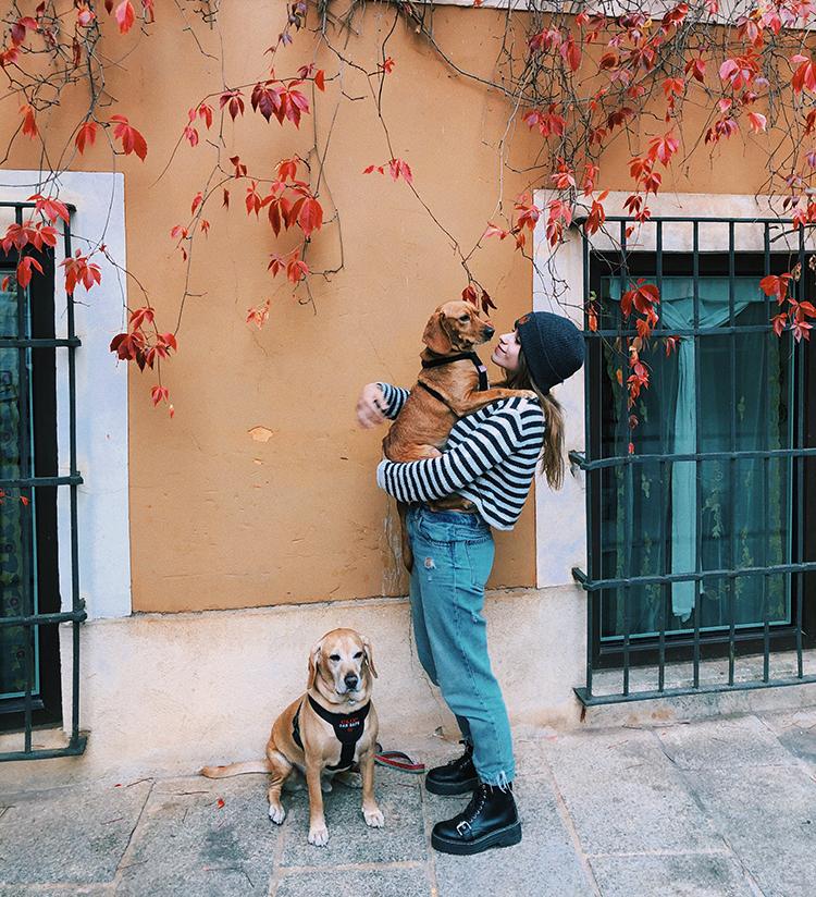 Viajes con perros por Cuenca.